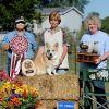 2013 High Combined In Herding Trial - Lakeways Snickers Behrens HSAs AX AXJ